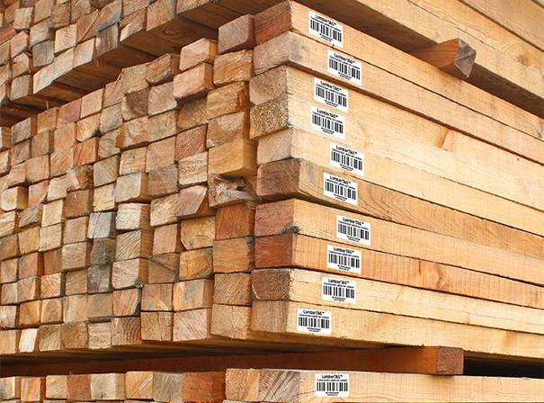 Barcodes for Wood Identification