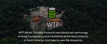 Digitizing the paper trails of wood processing operations in the Amazon region and put it on a public blockchain